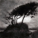 image of landscape mezzotint etching Airstream by David Ladmore depicting the Dallas Road area of Victoria, BC
