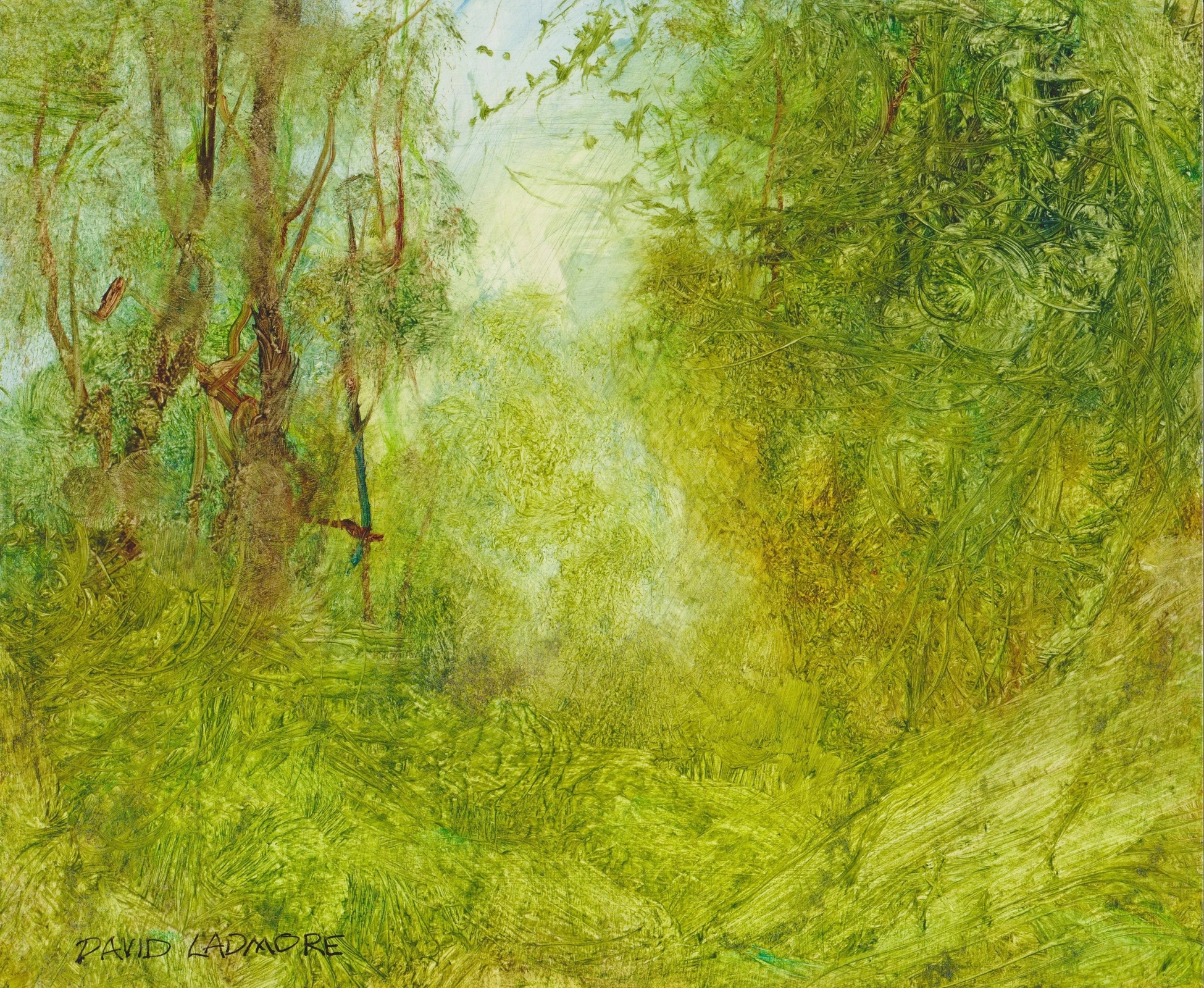 image of landscape oil painting Forest Light 68 by David Ladmore