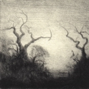 image of landscape drypoint etching Garry Oaks IV by David Ladmore depicting Garry Oak trees in Beacon Hill Park, Victoria, BC