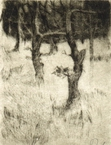 image of landscape drypoint etching Garry Oaks I by David Ladmore