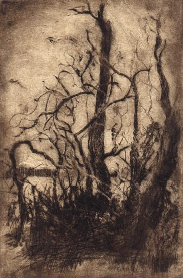 image of landscape drypoint print Garry Oaks VI by David Ladmore depicting Garry Oak trees in Beacon Hill Park, Victoria, BC