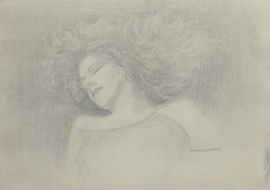 image of figurative silverpoint drawing James Bay Interior #3 by David Ladmore
