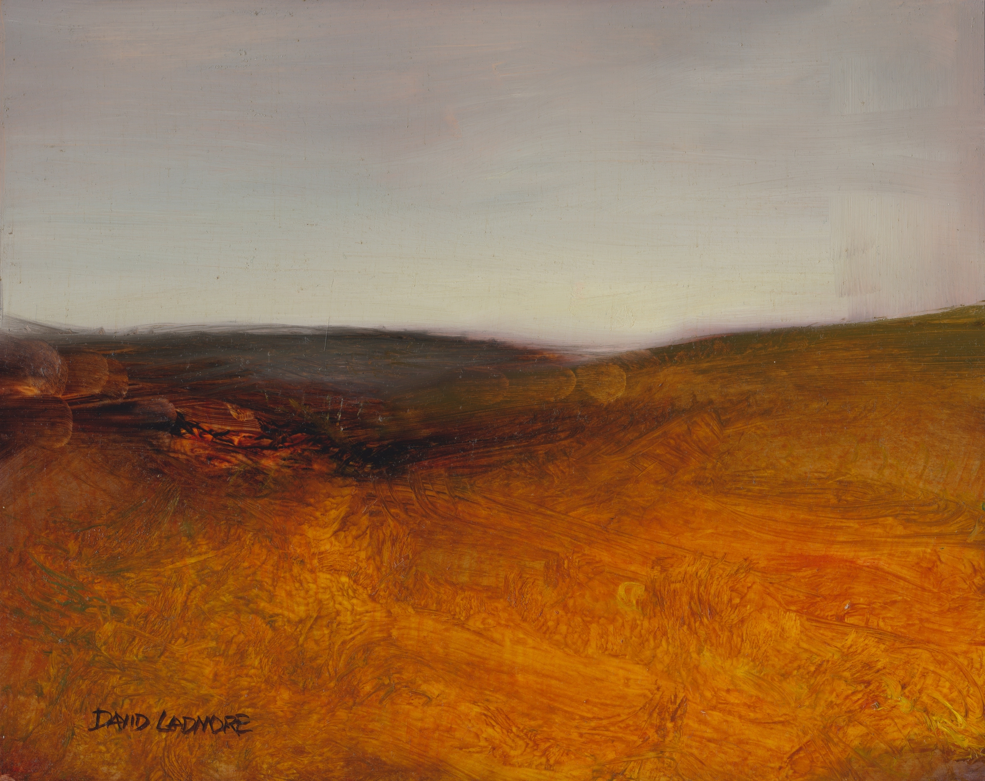 image of landscape oil painting Moorland 30 by David Ladmore