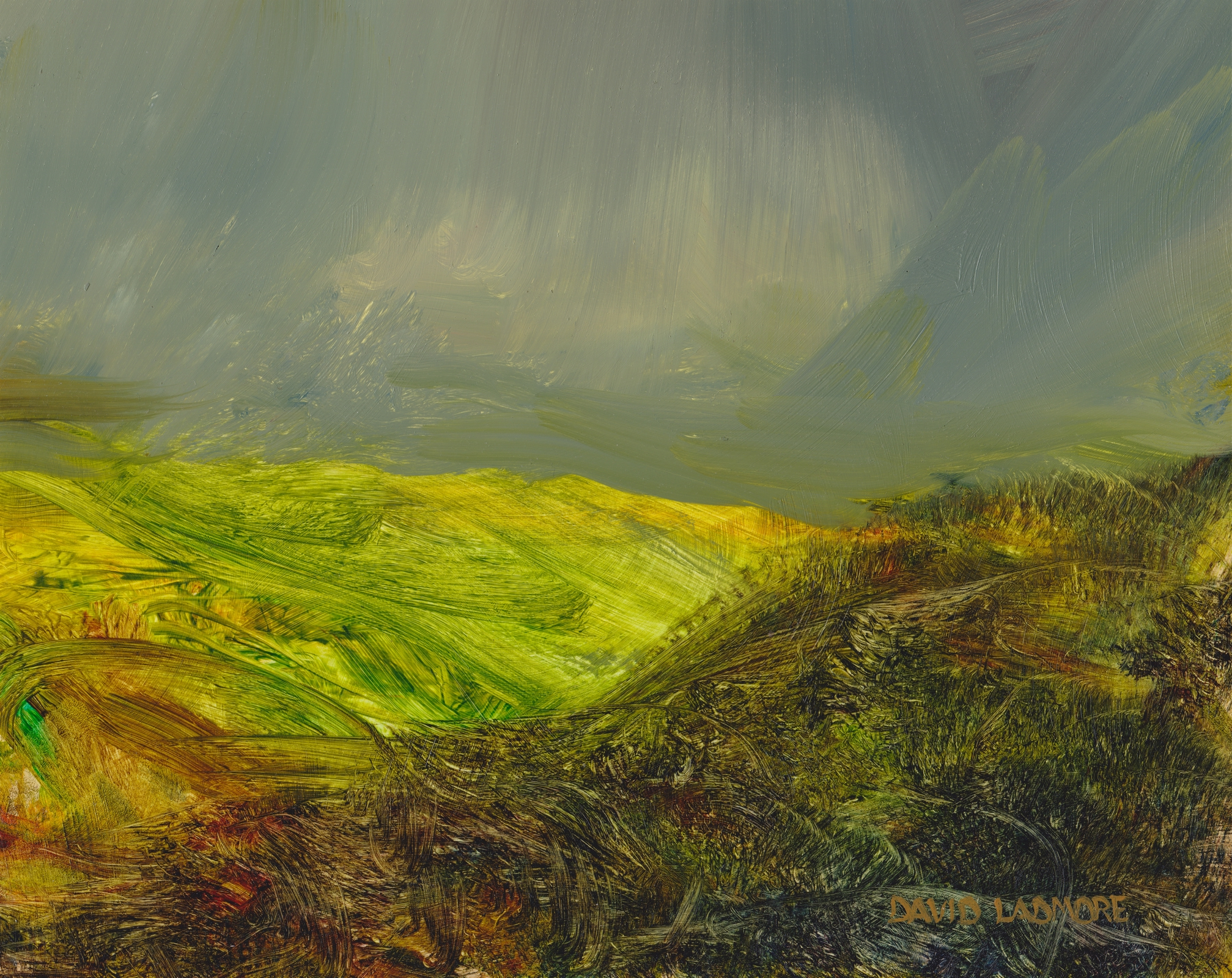 image of landscape oil painting Moorland 48 by David Ladmore