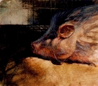 image of watercolor painting Pig Dreams by David Ladmore