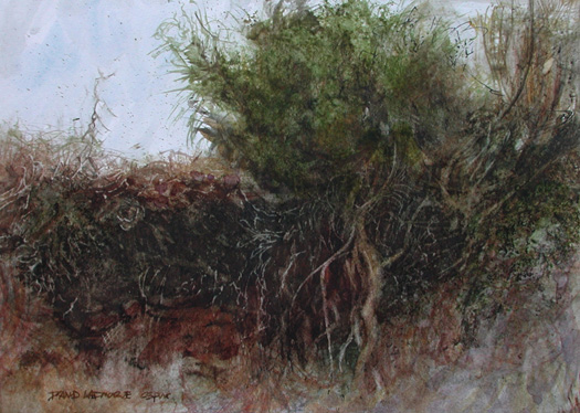 image of watercolor landscape painting Roots by David Ladmore