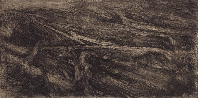 image of landscape etching print Windswept by David Ladmore depicting driftwood along the shore of Dallas Road, Victoria, BC