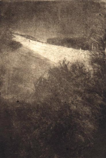 image of landscape mezzotint with etching print Winter Hill by David Ladmore depicting Beacon Hill Park, Victoria, BC in winter