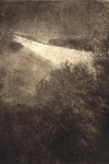 image of landscape mezzotint with etching Winter Hill by David Ladmore depicting Beacon Hill Park, Victoria, BC in winter